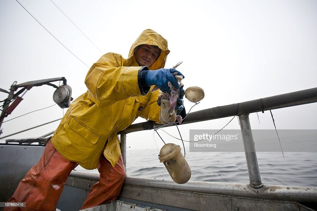 Dungeness crab fishing season gets underway getty images for Crab fishing game