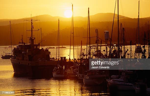 Eden, New South Wales, Australia. Moored yachts at a pier silhouetted by the setting sun.