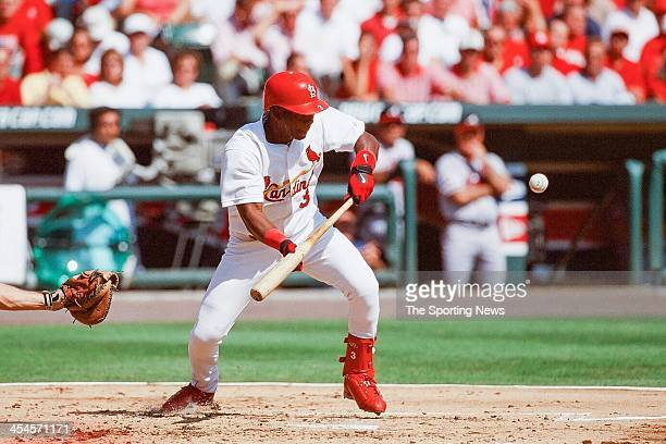 Edgar Renteria of the St Louis Cardinals bats during Game One of the National League Divisional Series against the Atlanta Braves on October 3 2000...