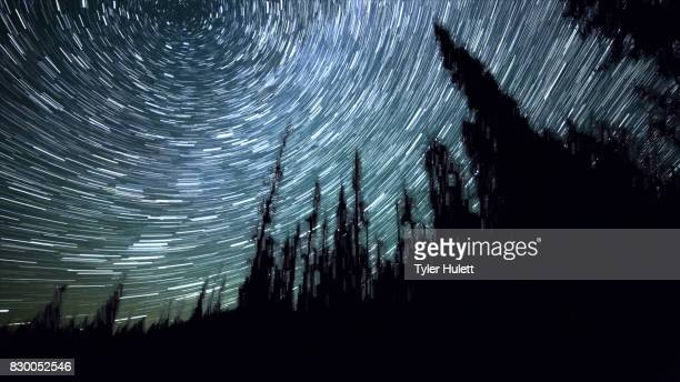 Edge of Elk Meadow on Mt. Hood Night Sky Star Trails Over Oregon
