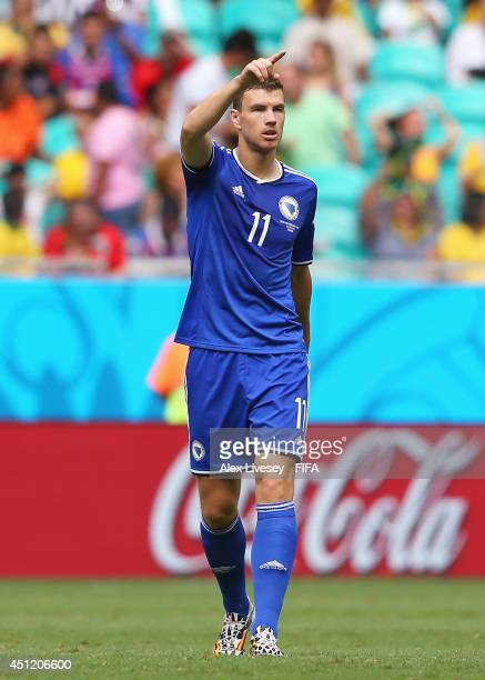 Edin Dzeko of Bosnia and Herzegovina celebrates scoring his team's first goal during the 2014 FIFA World Cup Brazil Group F match between...