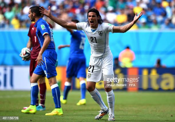 Edinson Cavani of Uruguay appeals to an assistant referee for a penalty during the 2014 FIFA World Cup Brazil Group D match between Italy and Uruguay...