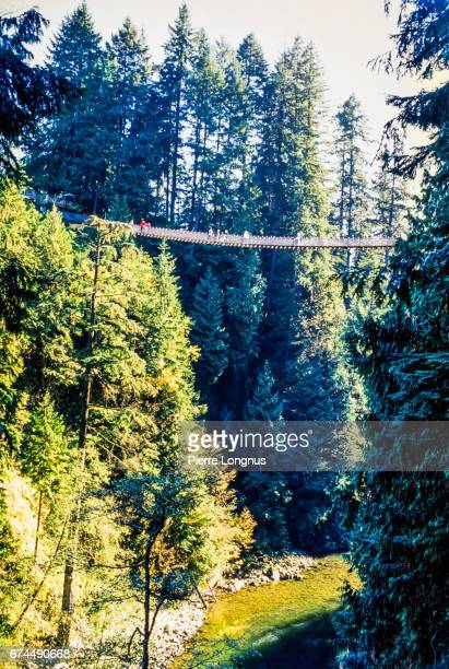 Editorial Use - Capilano Suspension Bridge, North Vancouver, Canada