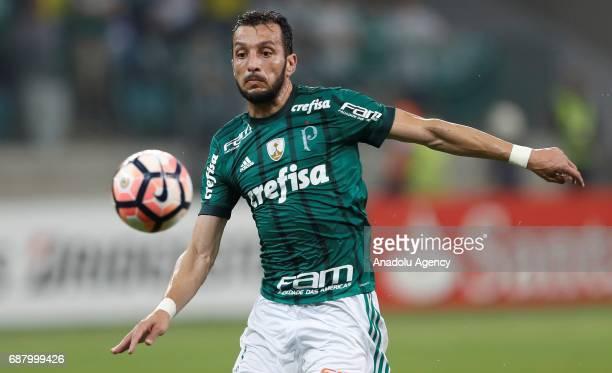 Edu Dracena of Palmeiras in action during Copa Libertadores of America match between Palmeiras and Atletico Tucuman in Sao Paulo Brazil on May 24 2017