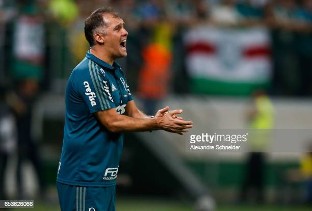 Eduardo Baptista head coach of Palmeiras in action during the match between Palmeiras of Brazil and Jorge Wiltersmann of Bolivia for the Copa...