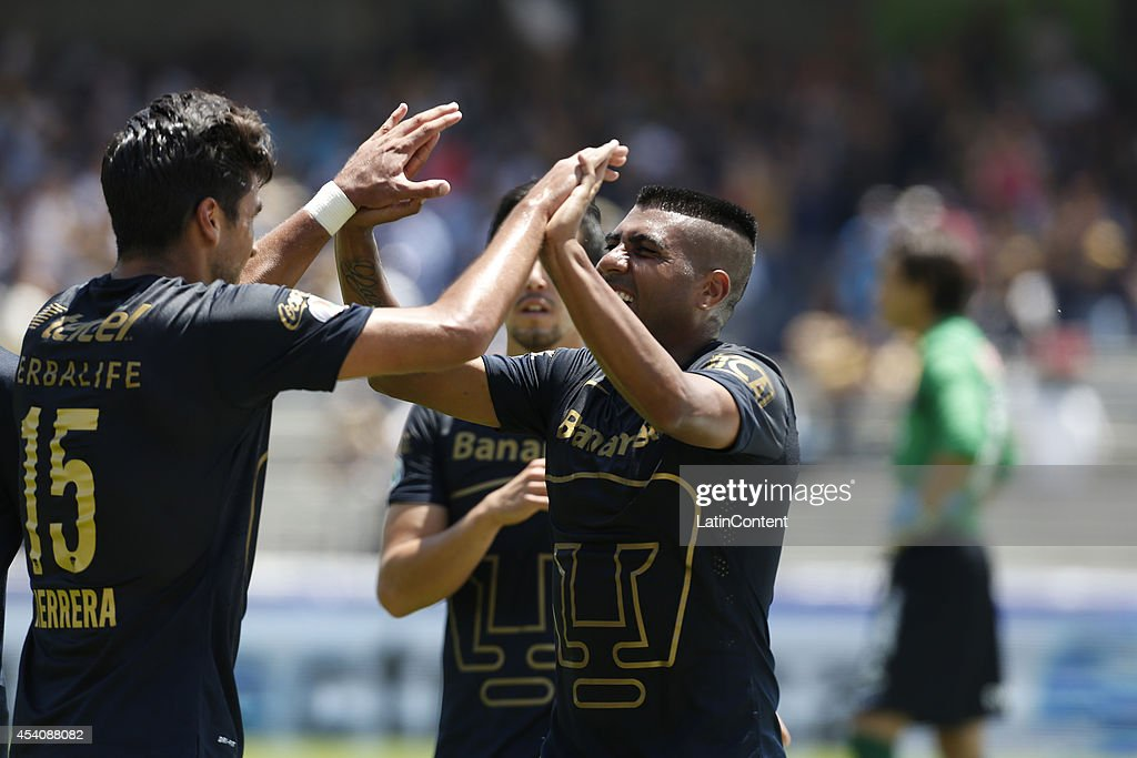 Eduardo Herrera celebrates with <a gi-track='captionPersonalityLinkClicked' href=/galleries/search?phrase=Daniel+Ludue%C3%B1a&family=editorial&specificpeople=6905916 ng-click='$event.stopPropagation()'>Daniel Ludueña</a> of Pumas UNAM after scoring during a match between Pumas UNAM and Xolos Tijuana as a part of 6th round Apertura 2014 Liga MX at Olimpic Stadium on August 24, 2014 in Mexico City, Mexico.