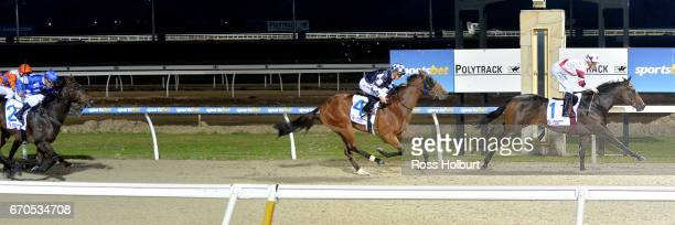 Educate ridden by Ben Allen wins the Racingcom 3YO Maiden Plate at Racingcom Park Synthetic Racecourse on April 20 2017 in Pakenham Australia