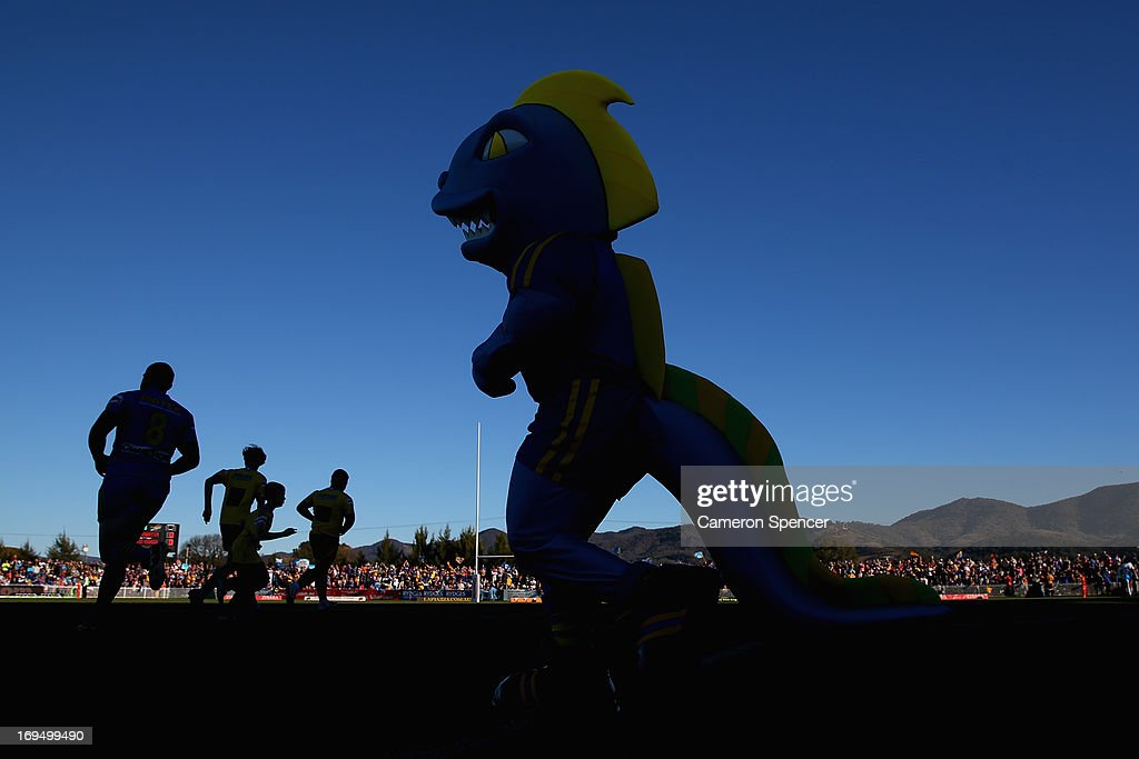 Eels players and the Parramatta mascot run onto the field during the round 11 NRL match between the Parramatta Eels and the Gold Coast Titans at Glen Willow Regional Sports Stadium on May 26, 2013 in Mudgee, Australia.