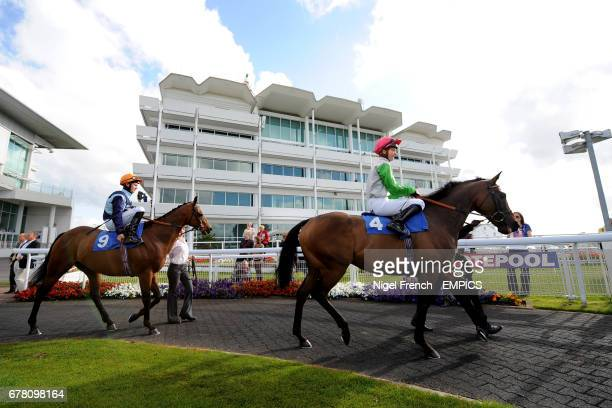 Effigy ridden by Amy Scott and Phluke ridden by Charles Bishop in the parade ring at Epsom Downs Racecourse before the Download Epsom's Android Or...