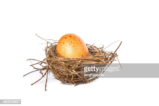 Egg on a white background : Stock Photo