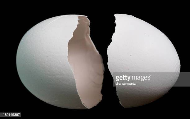 Egg shell, two parts