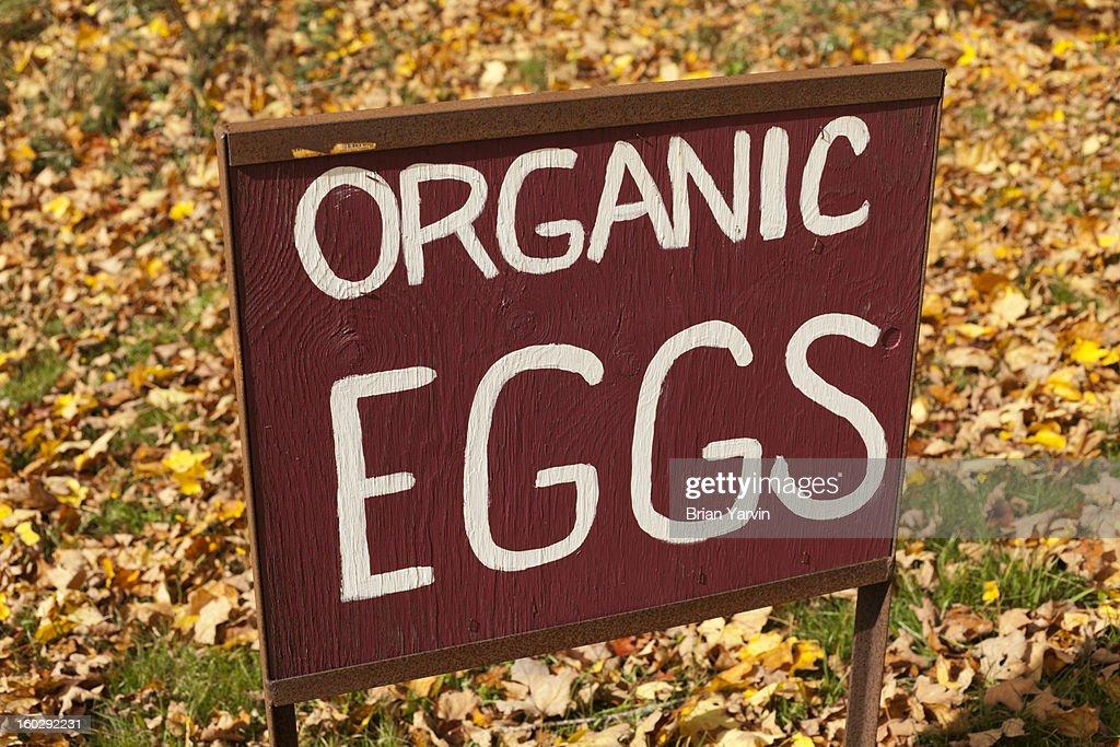 Egg sign at an organic farm : Stock Photo