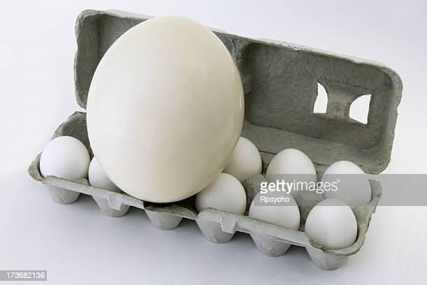 Egg-ceeding Ei-spectations