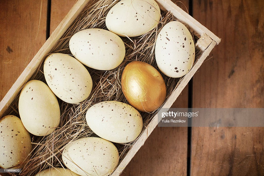Eggs and one golden egg in nest basket : Stock Photo