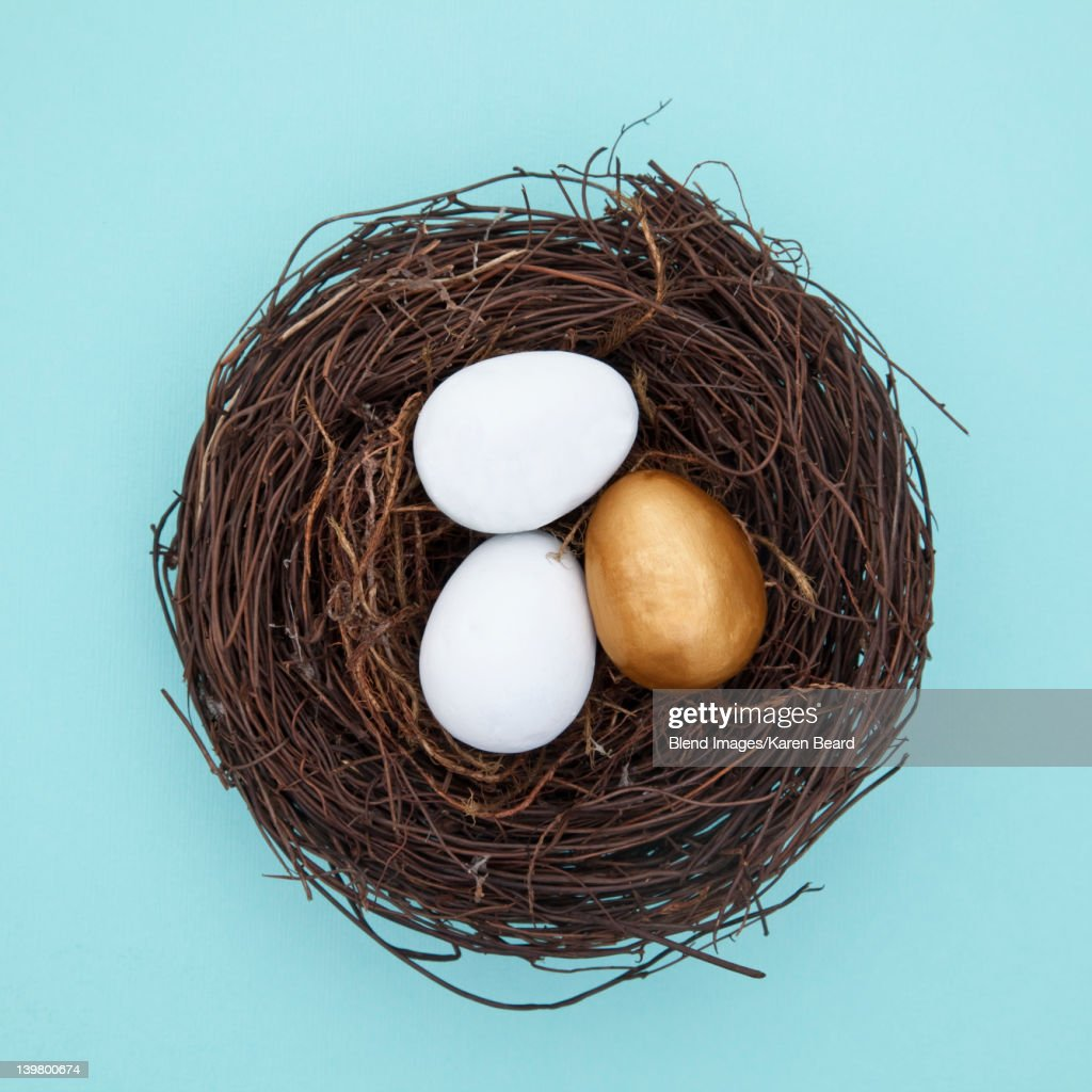 Eggs and one golden egg in next