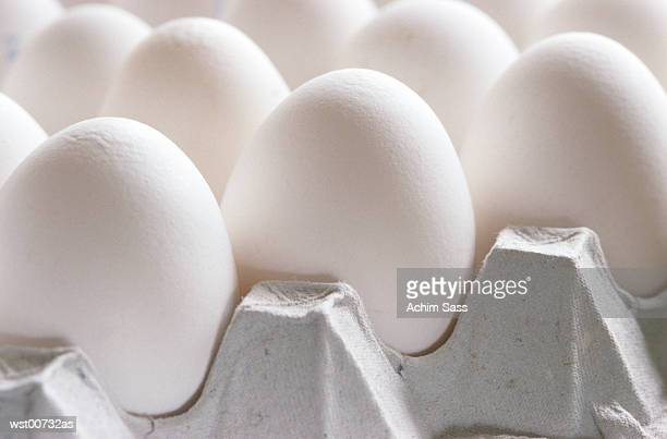 Eggs in tray, close up