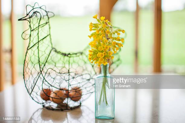 Eggs in wire hen ornament and vase of wild Cowslips Primula veris in springtime in the Cotswolds Oxfordshire UK