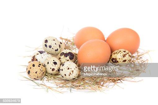 Eggs : Stock Photo