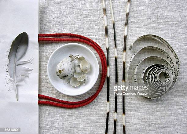 Eggs shells, porcupine quills and measuring tape
