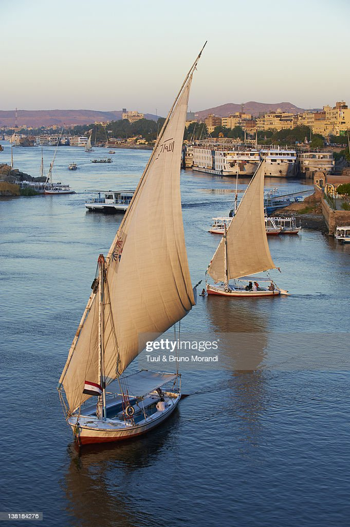 Egypt, Aswan, Feluccas on the Nile River