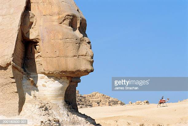 Egypt, Giza, Sphinx, side view