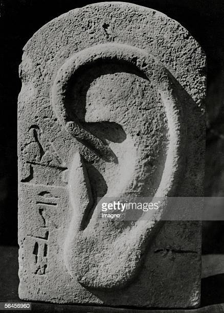 Egypt Sculpture of huge ear with hieroglyphics found by Prof Selim Hassan near the pyramids of Gizeh Photography 1937 [aegypten Skulptur eines...