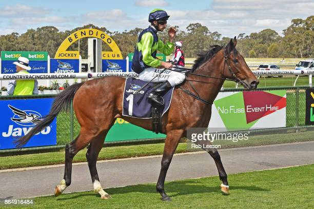 Egyptian Bullet ridden by Jamie Mott returns to scale after winning the Share Media Advertising Group 3YO Fillies BM64 Handicap at Bendigo Racecourse...