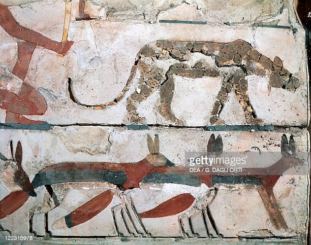 Egyptian civilization Old Kingdom Dynasty III Fresco with foxes From Meidum