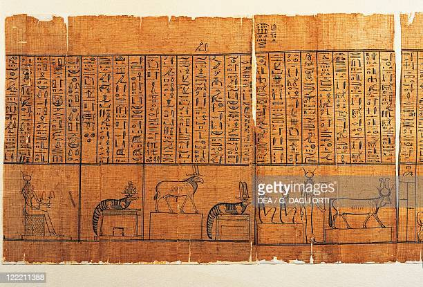 Egyptian civilization Roman Age 1st century bC Jumilhac Papyrus Treaty of mythological geography in cursive hieroglyphs Detail with procession of...