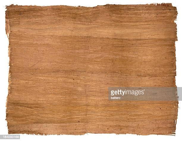 Ägyptischen papyrus