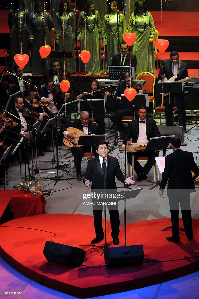 Egyptian pop star Hani Shaker performs in the Egyptian Opera House in Cairo on the occasion of Valentine's Day, on February 14, 2013.