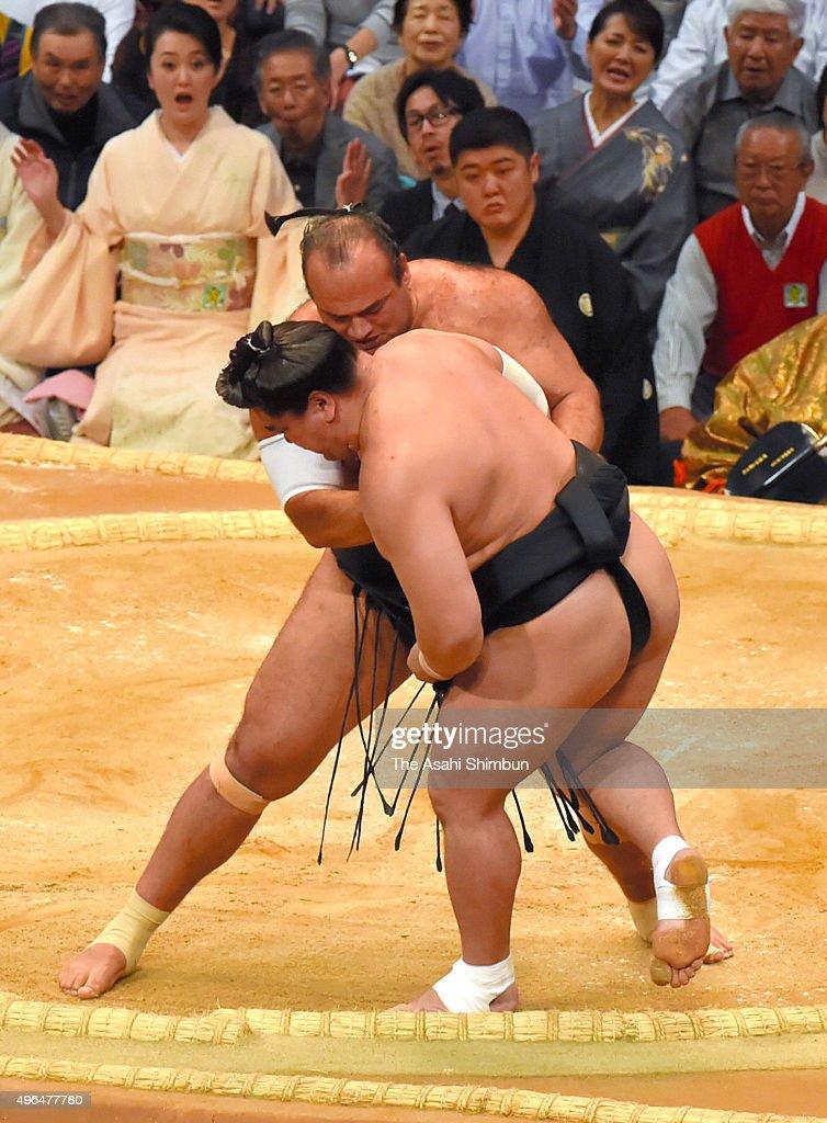 Egyptian wrestler Osunaarashi pushes Mongolian yokozuna Harumafuji out of the ring to win during day two of the Grand Sumo Kyushu Tournament at...