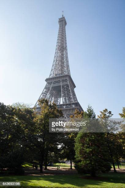 Eiffel Tower from park