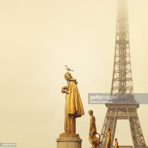 Eiffel tower Paris from Trocadero