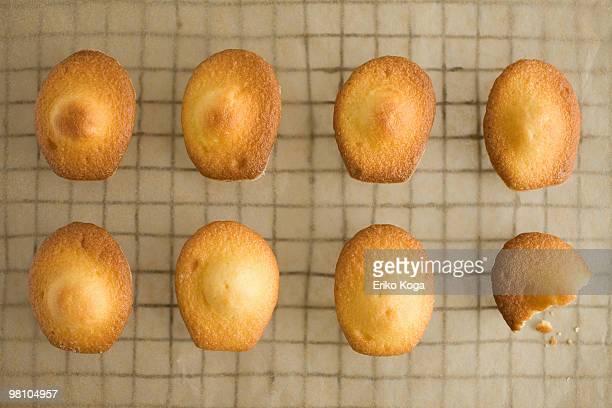 Eight madeleines on net and one half-bitten