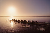 Eight-man crew rowing at sunrise, elevated view