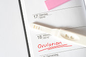 Ein Ovulationstest und ein Kalender
