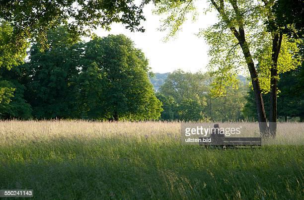 ein Mann sitzt auf einer Parkbank im Schatten der Bäume und telefoniert