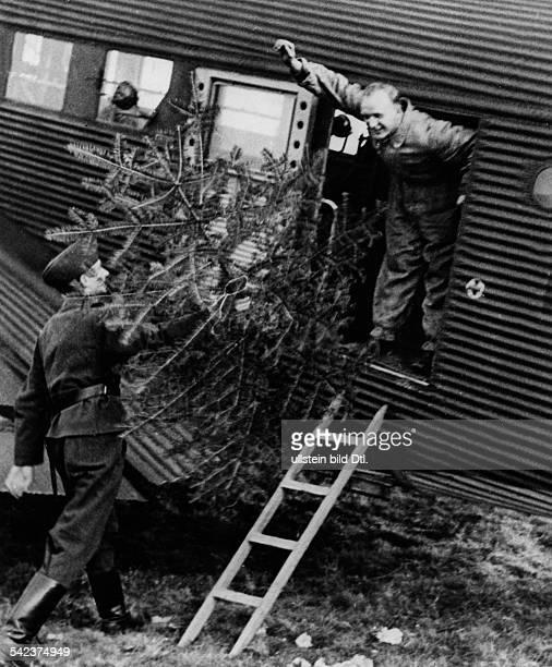 Ein Tannenbaum wird in eine Transportmaschine geladen um zu den Soldaten an der Front gebracht zu werdenDezember 1940 Aufnahme PresseIllustrationen...