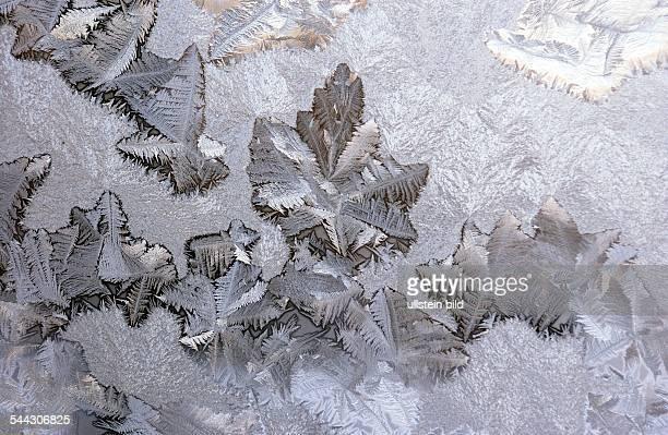 Eisblumen an einer Fensterscheibe