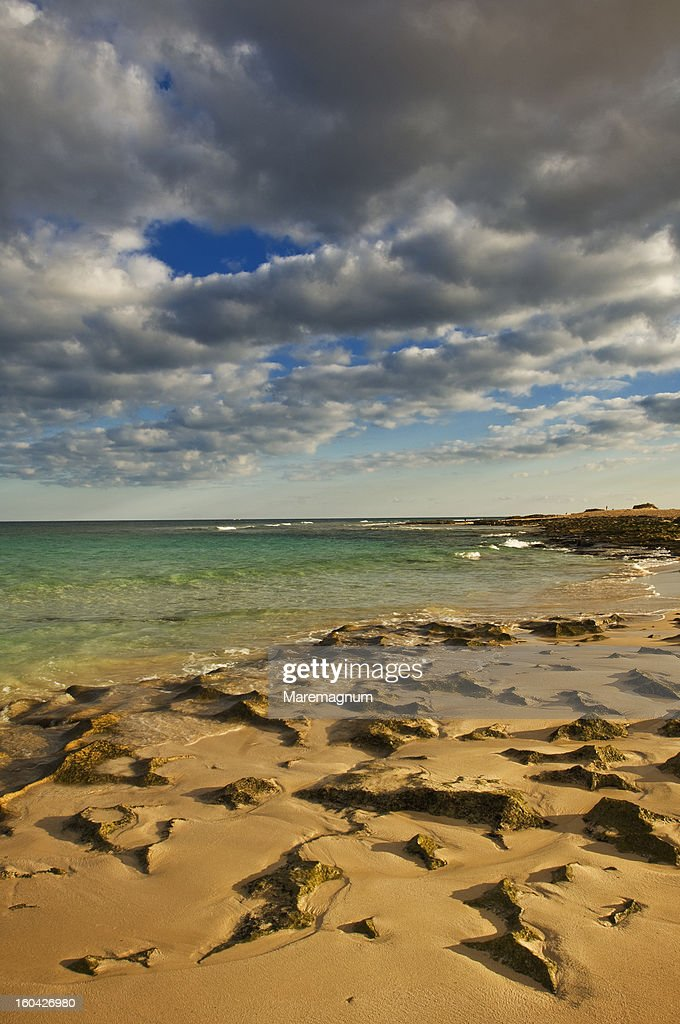 'El Jable' natural park, the beach : Stock Photo