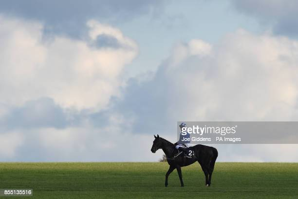 Elarqam ridden by Jim Crowley after winning the Tattersalls Stakes during day one of the Cambridgeshire Meeting at Newmarket Racecourse
