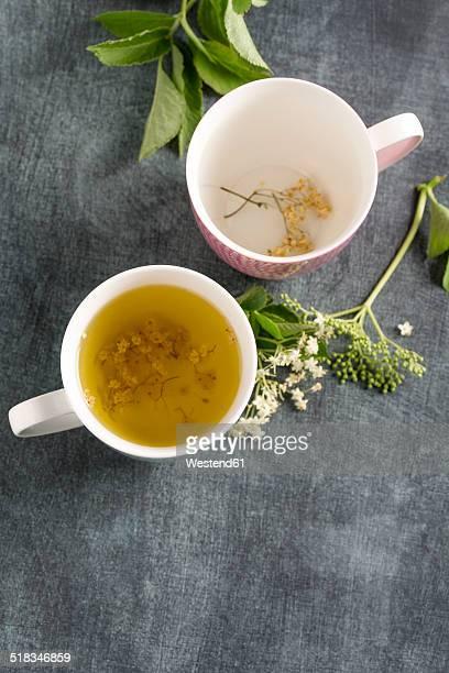 Elderberry tea in tea cup and elderflower