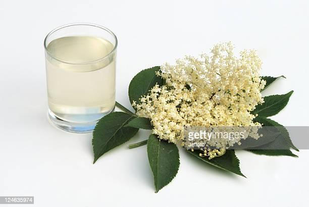 Sureau accueillant verre de fleur de sureau