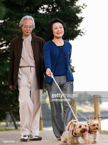Elderly Couple Walking Their Dogs