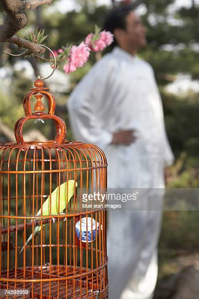 Elderly man in traditional Chinese clothing in background with a bird cage in foreground.