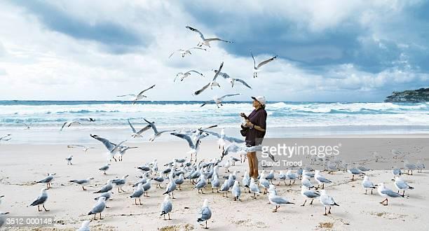 Elderly Woman Feeding Gulls