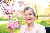 A happy elderly woman in wheelchair outside in spring nature.