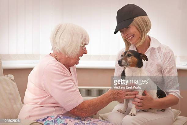 elderly woman petting a volunteer's dog