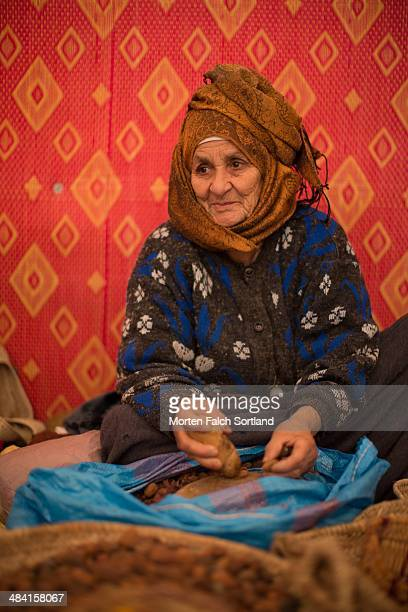 Elderly woman preparing argan nuts for producing argan oil at a cooperative company at the Moroccan countryside